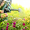 Why Gardening Is Good For Your Health (and other benefits…)