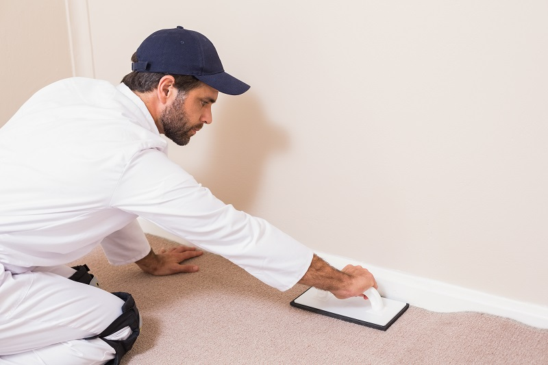 Hiring Professional Carpet Cleaning Services