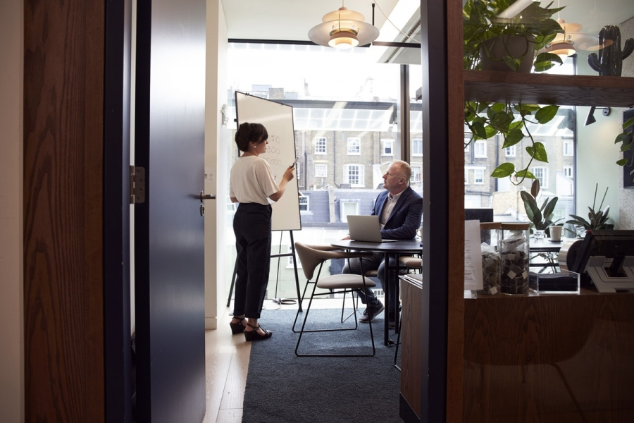 How To Include Biophilic Elements In Your Office Décor